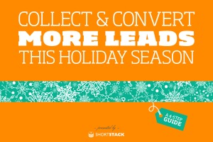 Collect and Convert More Leads This Holiday Season: A 4-Step Guide