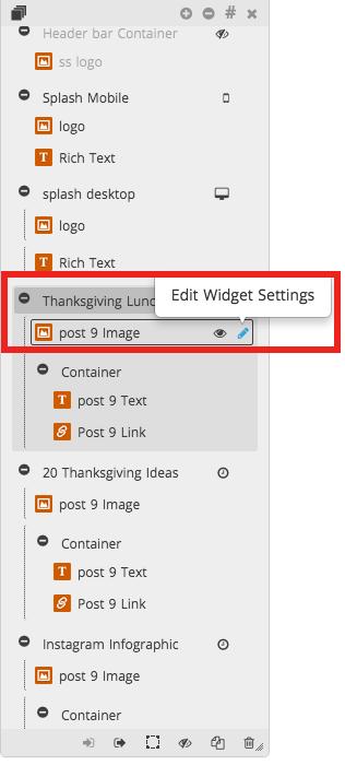 Edit Widget