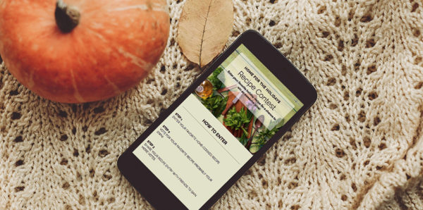 20 Thanksgiving Campaign Ideas and Examples