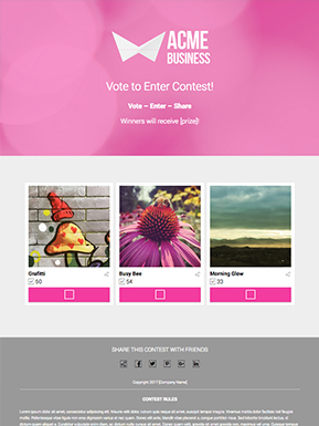 Vote to Enter Giveaway Template