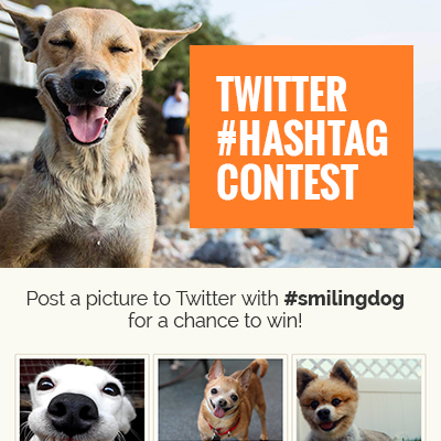 Twitter Hashtag Contest Template