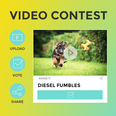 Video Contest Template