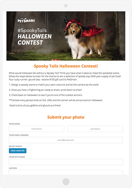 PetSmart UGC Campaign