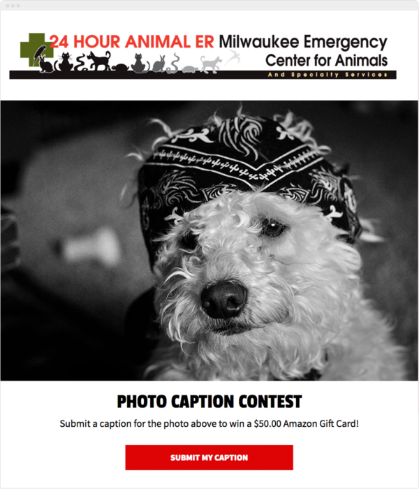 Photo Caption Contest