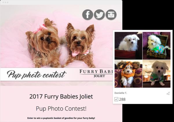 Pup Photo Contest
