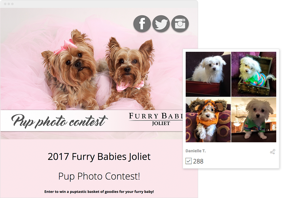 Pup Photo Contest