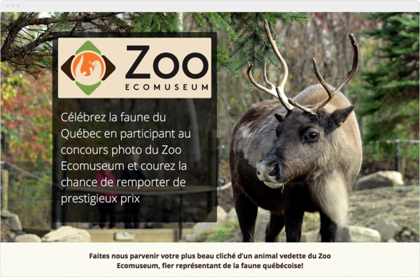 Zoo Friend-Referral COntest