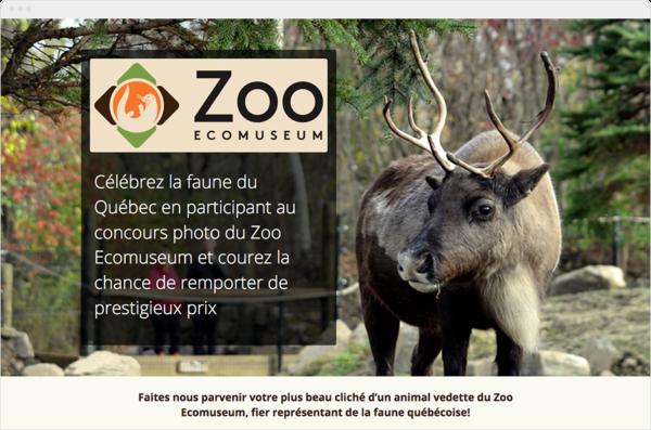 Zoo Friend-Referral COntest