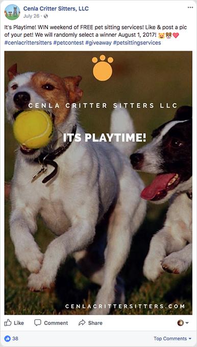 Petsitting photo contest
