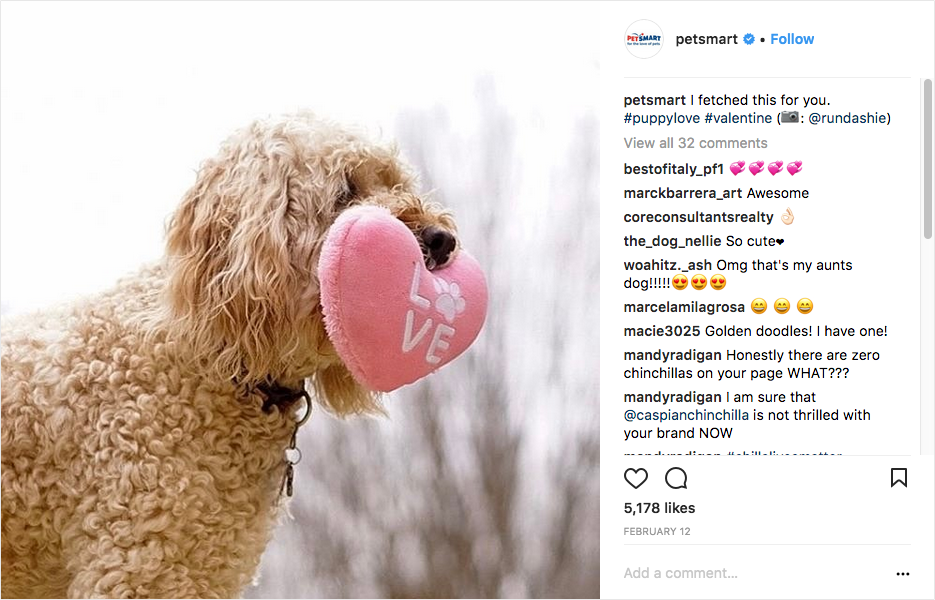 Once PetSmart has gotten permission from the user, they repost the photo with a new caption and give photo credit to the original poster.