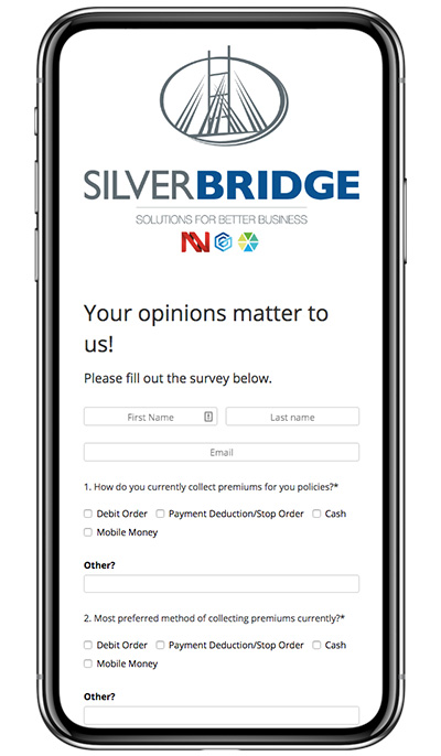 SilverBridge's Customer Survey