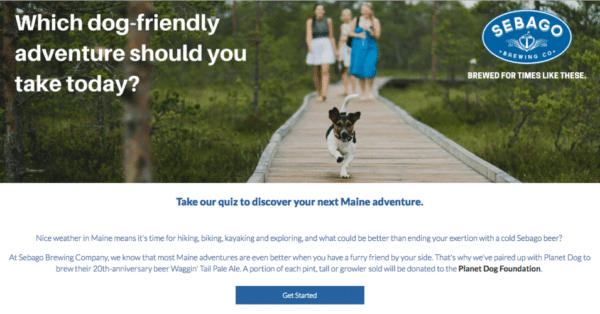 Contest Marketing Example - Dog Adventure
