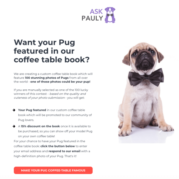 Ask Pauly for Profitable Social Media Contest