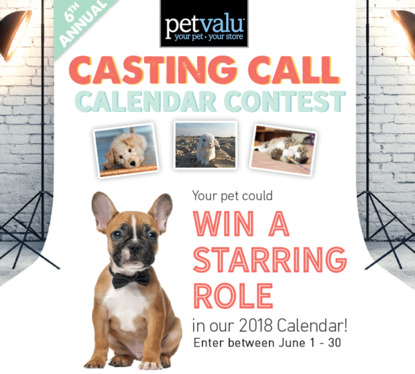 User Contribution from Petvalu for Contest Marketing