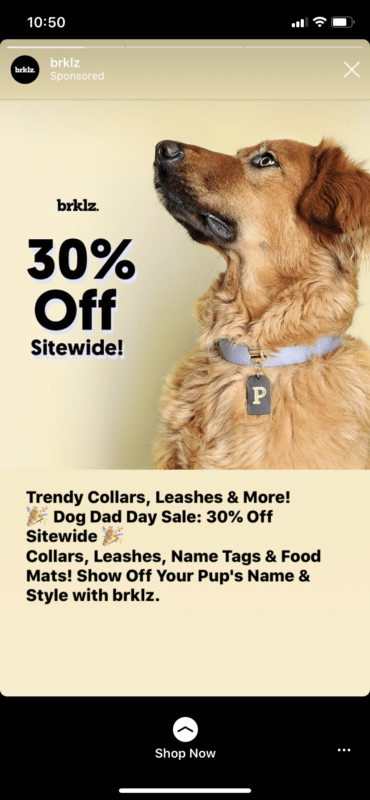 brklz Instagram ad 30% off sitewide dog dad day sale