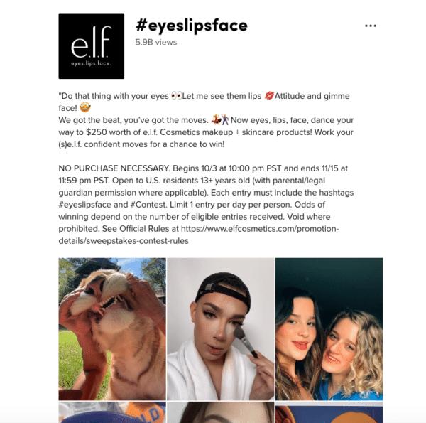 Eyes Lips Face ELF TikTok Contest
