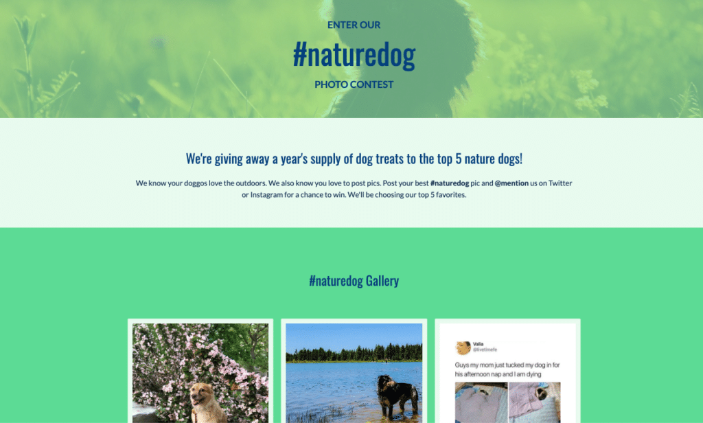 The-9-Best-Performing-ShortStack-Landing-Page-Templates-naturedog-hashtag-contest